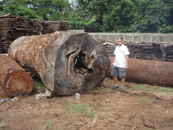 raw ipe logs